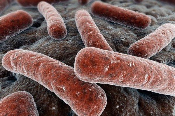 сальпингит вызывается бактериальной или вирусной инфекцией, которая проникает через влагалище в маточные трубы